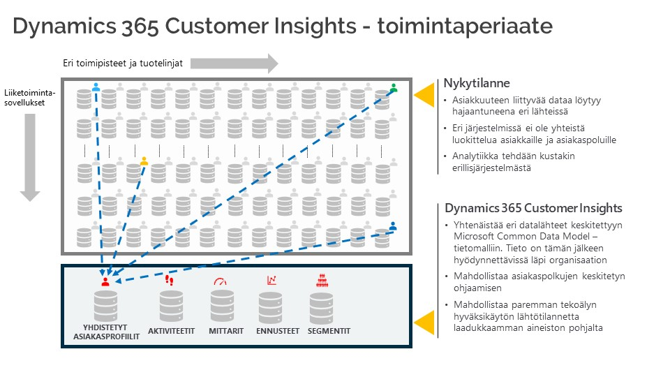 MS Dynamics 365 Customer Insights